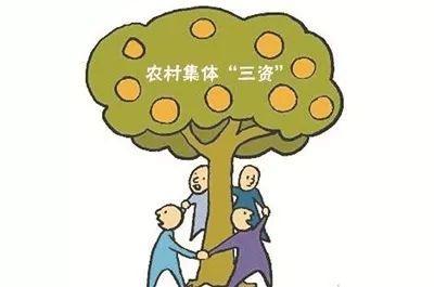 """""""三资""""是啥,如何扎紧篱笆护""""三资"""""""