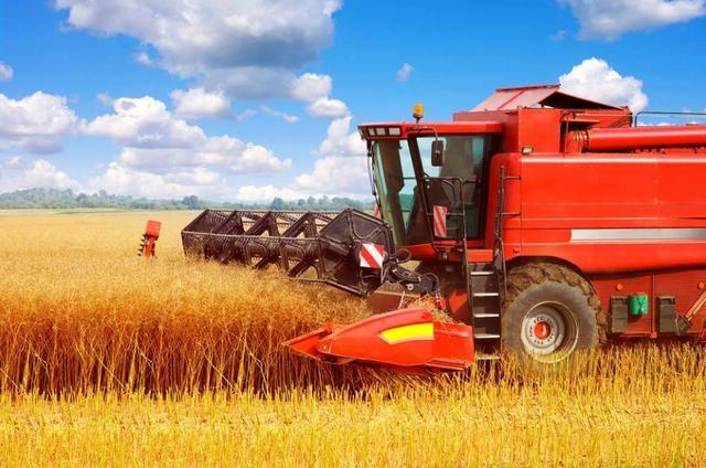 农村8个特色的创业好项目,利润都不低