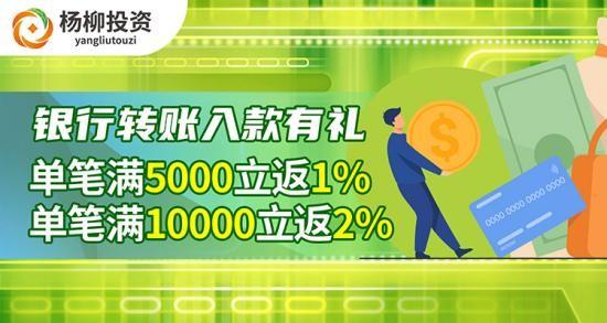 杨柳金管家:个人投资者需重点关注哪些?